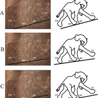 Prehistoric illustration of an elephant from the Tadrart Acacus cave in Libya (Gabor Horvath/PLoS ONE/PA)
