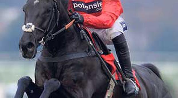 Sanctuaire and Ruby Walsh, at Sandown last March