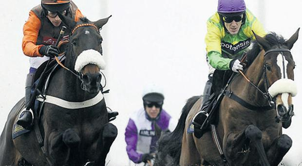 Long Run (left) on his way to inflicting Kauto Star's sole King George defeat in 2010