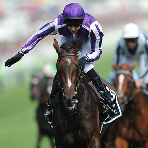 Camelot wins the Derby