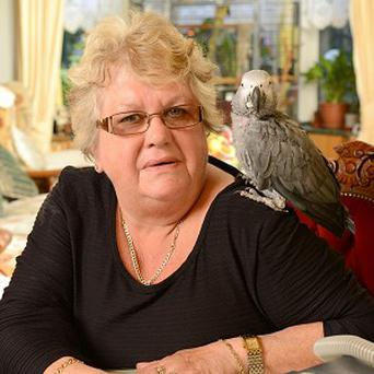 An African grey parrot wakes up its owner if it notices a dangerous pause in her breathing