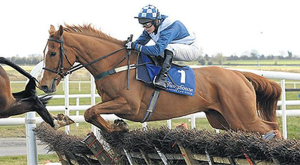 Arabella Boy, seen here in action at Fairyhouse, will have his supporters at Cheltenham today