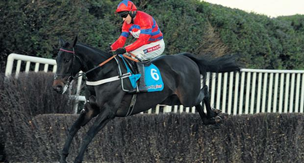 Sprinter Sacre has seemingly dismantled any worthwhile opposition for the Queen Mother.