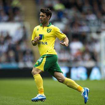 Wes Hoolahan could link up with his former boss