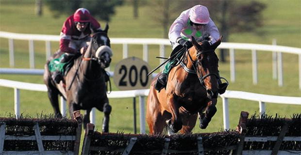Ruby Walsh and Pont Alexandre jump the last clear of Don Cossack to win the feature at Navan