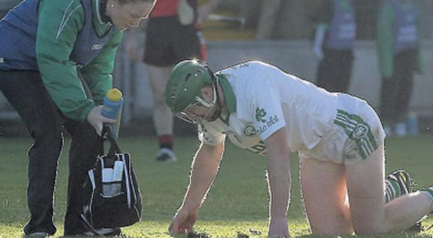 Henry Shefflin picked up an injury playing for Ballyhale earlier this month