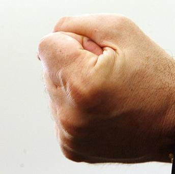 Hands largely evolved through natural selection to form a punching fist, a new theory claims