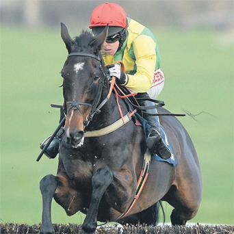 Sizing Europe, seen here winning at Clonmel under Andrew Lynch, will skip the King in favour of Leopardstown