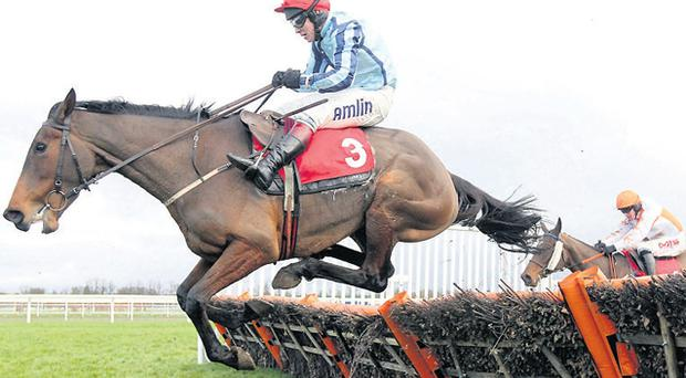 Swincombe Flame ridden by Richard Johnson on the way to winning at Kempton