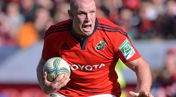 Paul O'Connell in action for Munster. Photo: Sportsfile