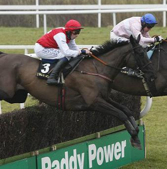 Joncol, centre, will run in the Grade Two Slaney Novice Hurdle on Sunday