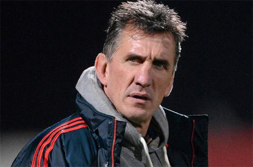 Rob Penney: believes players will rally. Photo: Sportsfile