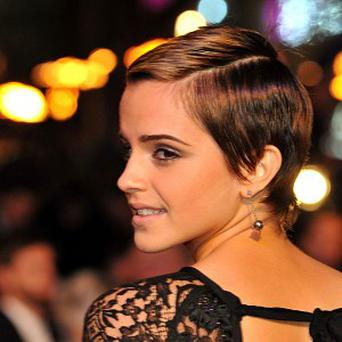 Harry Potter's wholesome sidekick Hermione Granger, played by Emma Watson, has been voted the best big screen role model
