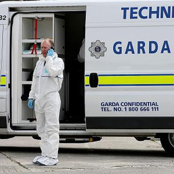 Four pipebombs were discovered in a derelict house in Co Louth