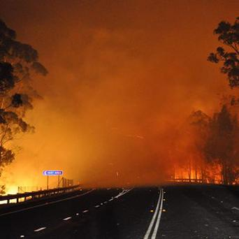Firefighters are battling scores of wildfires in Australia (AP/NSW Rural Fire Service, James Morris)