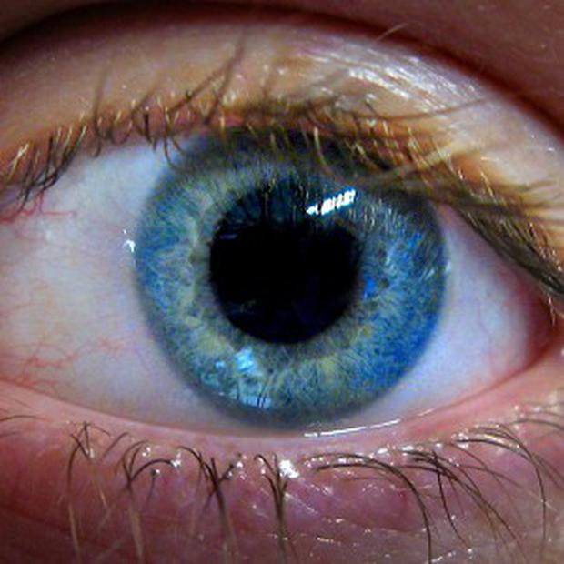 Men with blue eyes are viewed as less trustworthy than those with brown eyes