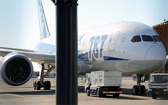 All Nippon Airways' Boeing 787 Dreamliner with a crack cockpit window is seen at Matuyama airport in Matsuyama, western Japan