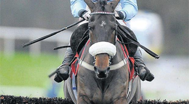Rubi Light, pictured here winning at Punchestown, has suffered minor setback