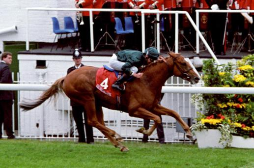 'Generous', with Alan Munro up, powers past the winning post to win the 1991 Derby at Epsom