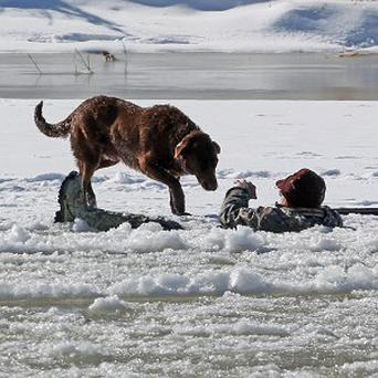 A hunter waits in the Colorado River for rescue (AP/The Grand Junction Daily Sentinel, Dean Humphrey)