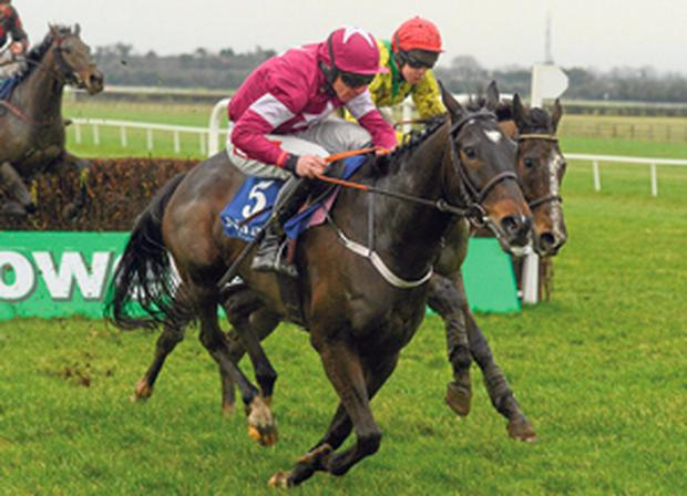 Tofino Bay and Davy Russell on the way to winning the Woodlands Park 100 Club Novice Steeplechase at Naas yesterday