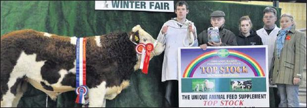 Pictured is James Waters, Ballinfull, with his winning Simmental Bull calf at Carrick-on-Shannon Fatstock Show. Also included is Paddy Hennelly (Top Stock), Shauna Waters, Sean Waters and Sharon Rothwell (Judge).