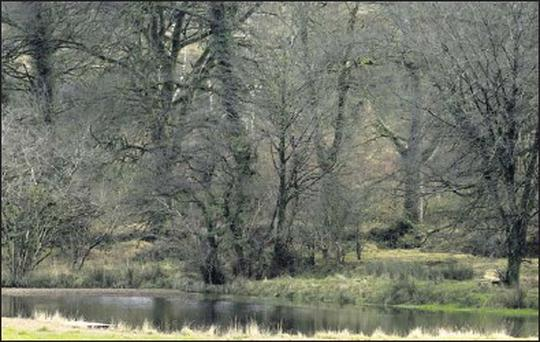 The lake in county Wicklow which is due to be searched by Gardai in the coming weeks.