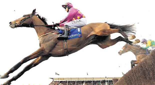 Big Zeb, with Barry Geraghty up, jumps the last on the way to winning at Cheltenham in 2010