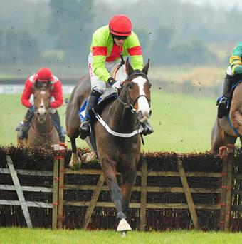 Our Conor will next hit the track at Leopardstown in February