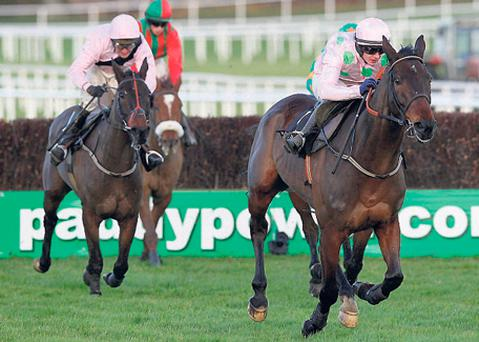 Oscars Well (L) can reverse Leopardstown placings with Arvika Ligeonniere (R)