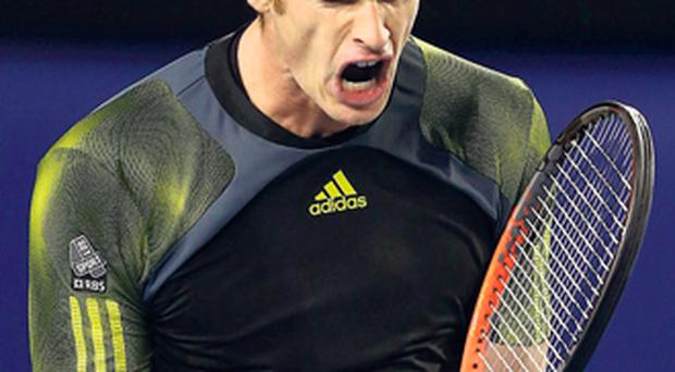 Andy Murray celebrates a point during his semi-final victory over Roger Federer