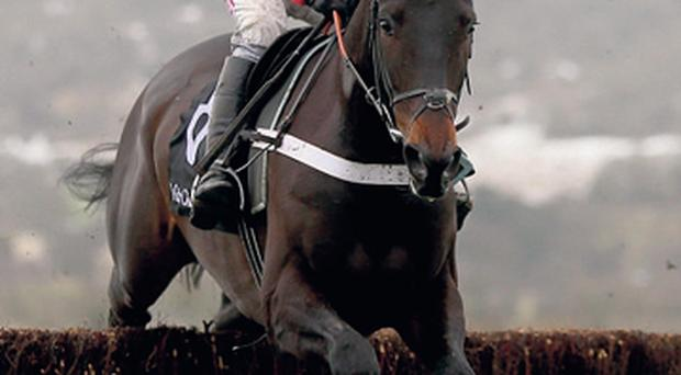 Sprinter Sacre saunters to victory under Barry Geraghty