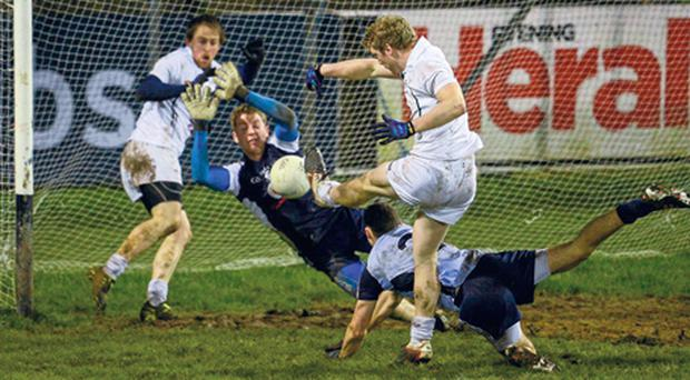 Kildare's Tomás O'Connor, 14, shoots past the Dublin goalkeeper Shane Supple, corner-back Darren Daly and his own team-mate Seanie Johnston to score the only goal of the game.