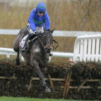 Hurricane Fly is clear at the final flight on his way to victory