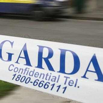 Two customers died after an internal 40ft wall in a DIY and garden centre collapsed, gardai said