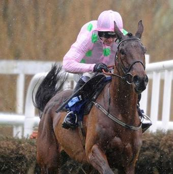 Pont Alexandre is among the star names in the Neptune Investment Management Noviece's Hurdle