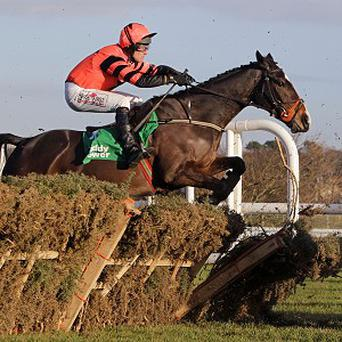 Jezki looks set to take his place in the Supreme Novices' Hurdle