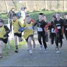 Eagerness abounds at the start of the boys' Under-11 race.