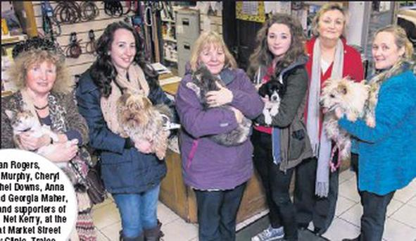 Joan Rogers, Fionnuala Murphy, Cheryl Fisher, Rachel Downs, Anna McCarthy and Georgia Maher, volunteers and supporters of Animal Help Net Kerry, at the open day at Market Street Veterinary Clinic, Tralee, last week.