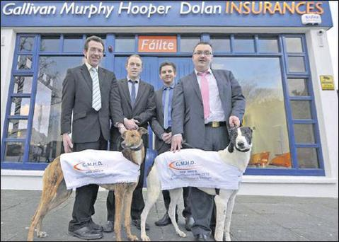 Attending the launch of this year's Juvenile Classic sponsored by GMHD Insurances outside their Killarney offices were, from left, Declan Dowling, Kingdom Greyhound Stadium Sales and Operations Manager, Seamus Moynihan (GMHD Ins Ltd), Simon Gallivan...