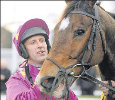 'Big Zeb' with jockey Robbie Power after a Leopardstown win.