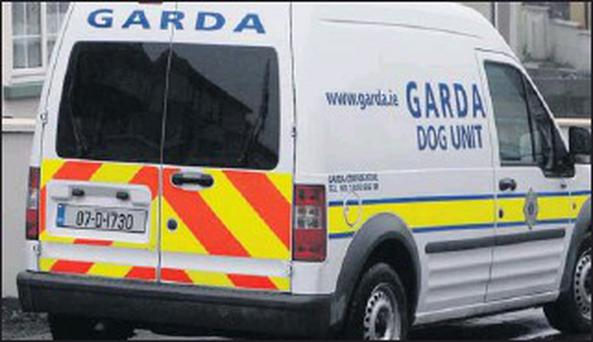 Stock photo: A garda dog unit van