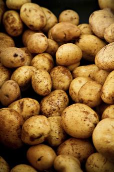 Carbohydrates, including potatoes, will be overtaken for the first time by fruit and vegetable as the recommended biggest staple of our daily diet