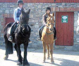 Riders ready themselves for a ride out at an AIRE-accredited centre