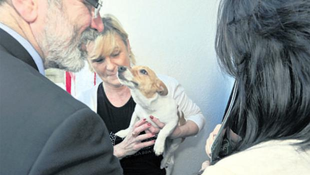 SF's Gerry Adams meets Patricia Goldsmith and her terrier Misty while canvassing in Gurranabraher, Cork, yesterday