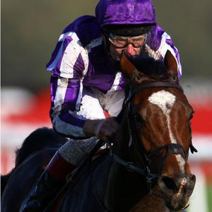 St Nicholas Abbey ridden by Johnny Murtagh. Photo: Getty Images