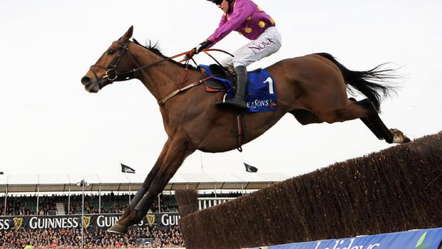 Big Zeb winner of the Queen Mother Champion Chase at Cheltenham. Photo: Getty Images