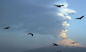 Birds fly past as the Popocatepetl volcano erupts in Mexico yesterday