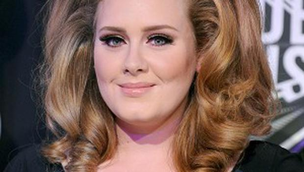 Adele has reportedly already met her new man's parents
