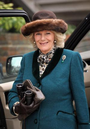 The Duchess of Cornwall arrives for during day two of the 2012 Cheltenham Fesitval at Cheltenham Racecourse, Gloucestershire. PRESS ASSOCIATION Photo. Picture date: Wednesday March 14, 2012. See PA story RACING Cheltenham. Photo credit should read: Tim Ireland/PA Wire. RESTRICTIONS: Use subject to restrictions. Editorial use only including book use. No commercial use. Call +44 (0)1158 447447 for further information.